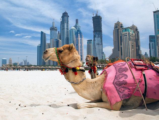 زیباترین جاهای امارات