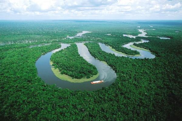 رود Amazon آمازون