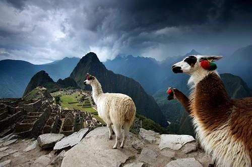 ماچو پیکو Machu Picchu ، پرو