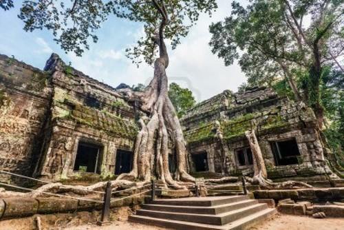 معبد Ta Prahm، کامبوج