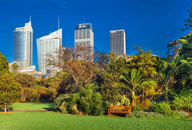 باغ گیاه شناسی سلطنتی سیدنی استرالیا