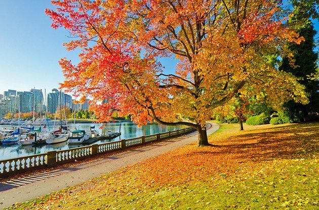 مناظر زیبای کانادا