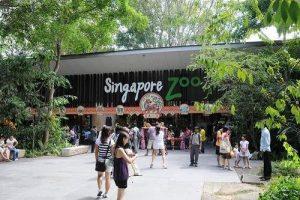 بهترین باغ وحش های جهان