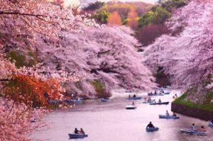 ۱۰ مکان جالب ژاپن
