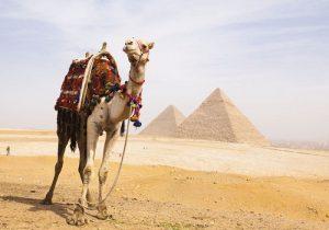 جاذبه های شگفت انگیز شمال قاره آفریقا