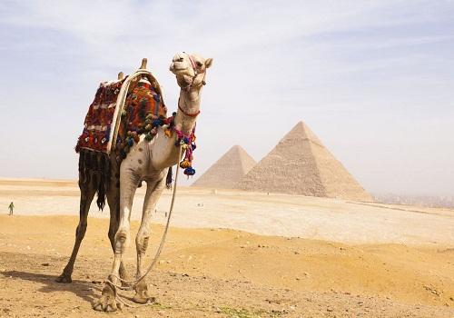 جاذبه های شمال آفریقا