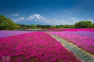 ۱۰ عجایب طبیعی ژاپن