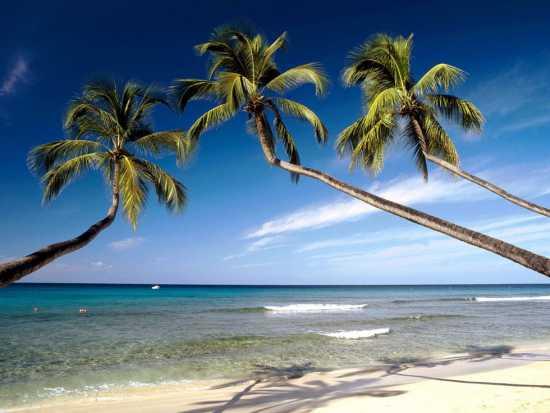 کشور جزیره ای باربادوس