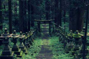 معبد شگفت انگیز باستانی در وسط جنگل های ژاپن