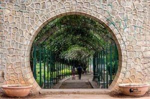 گزارش تصویری از باغ Lal Bagh هند