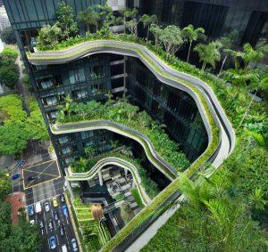 باغی شگفت انگیز روی هتلی در سنگاپور