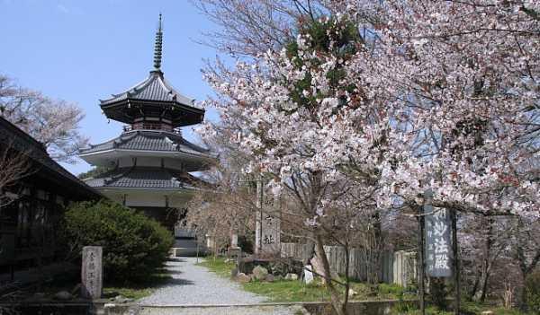 منطقه نارا در ژاپن