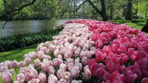 ۱۰ زیبا ترین باغ جهان