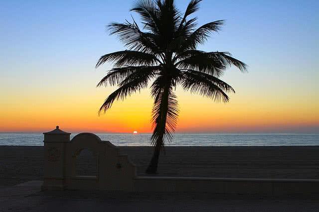 سواحل فلوریدا آمریکا