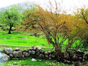 جاهای دیدنی استان خوزستان